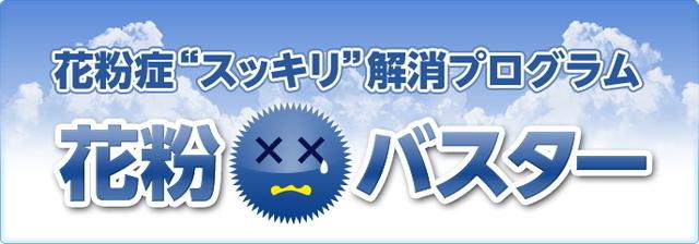 banner1_62594花粉症バスター1.jpg